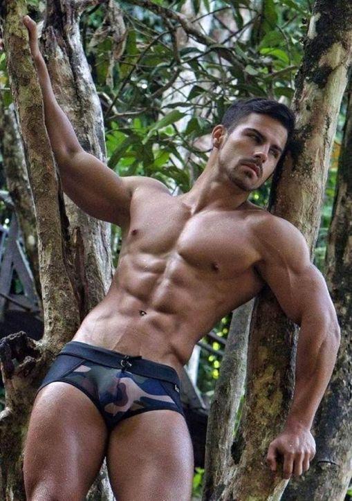 Hombres Musculosos Gay 28